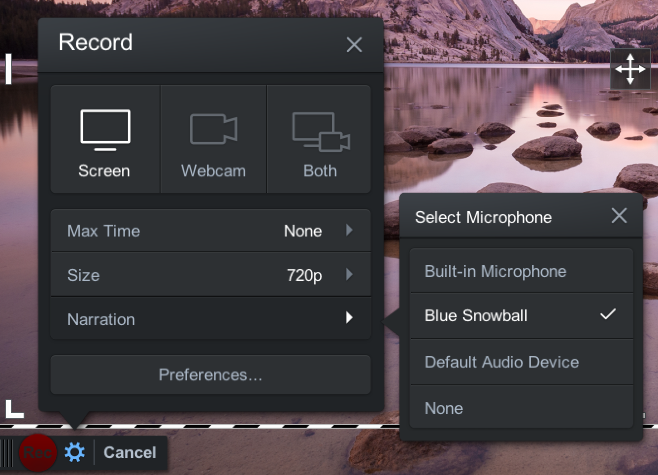 Screencast audio options
