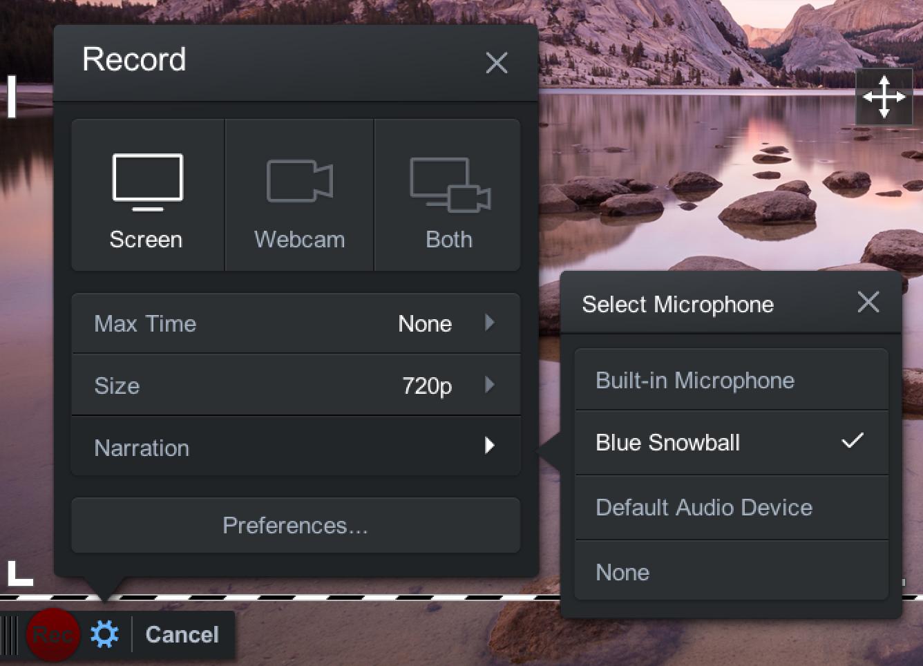 Screencast audio options