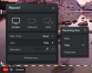 Screencast size options