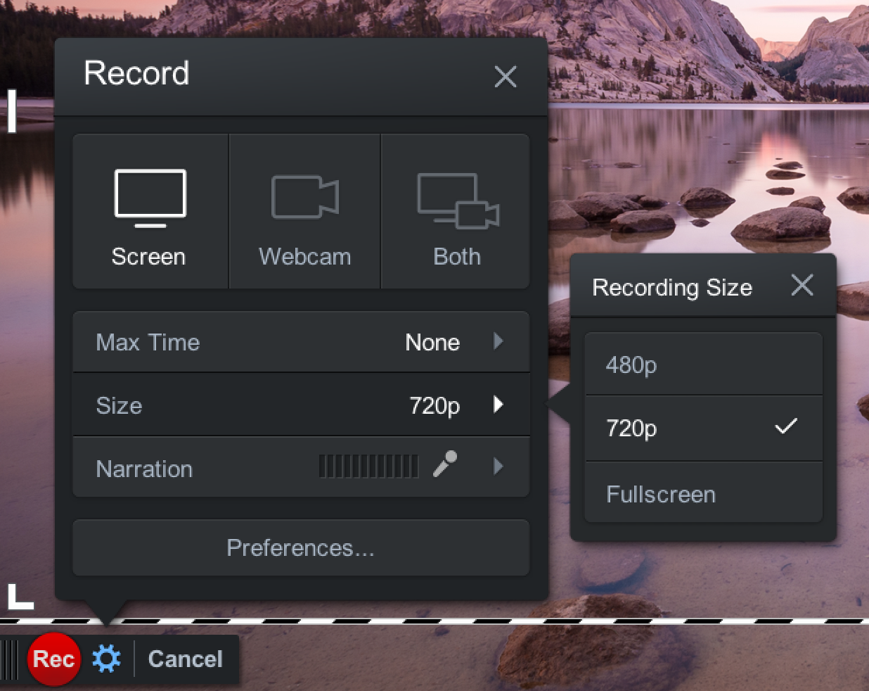 Screencast size options